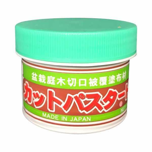 Masilla japonesa cicatrizante para bonsái de coníferas, 160 g